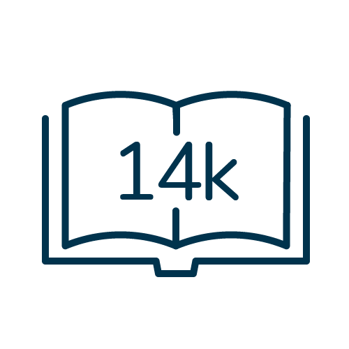 14k Icon